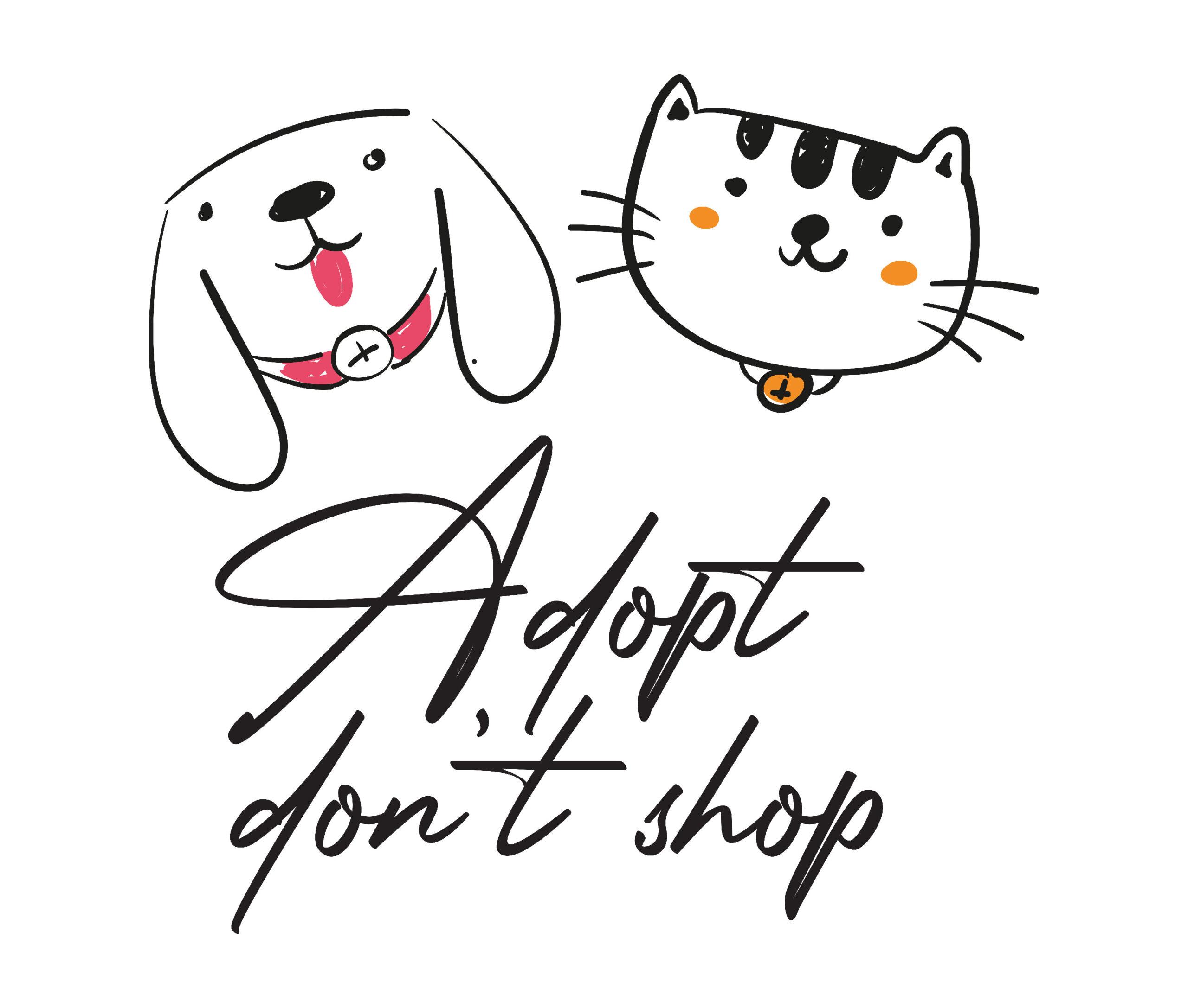 Adopt dont shop